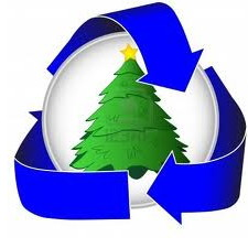 Recycle your Christmas tree.