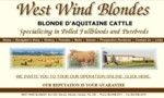 West Wind Blondes is located in Southern Alberta near the town of Stavely. They believe in total DNA parentage verification for both the Blonde dAquitaine herd and animals offered for sale. They maintain a recorded health profile on each animal from birth.